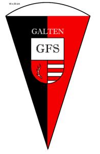 gfs-hold-flag-medium